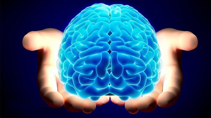 رابطه مغز انسان با آب